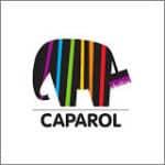 Teamwärts CAPAROL Farben fürs Leben 150x150 - Bogenparcours